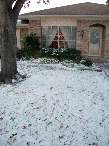 Texas White Christmas